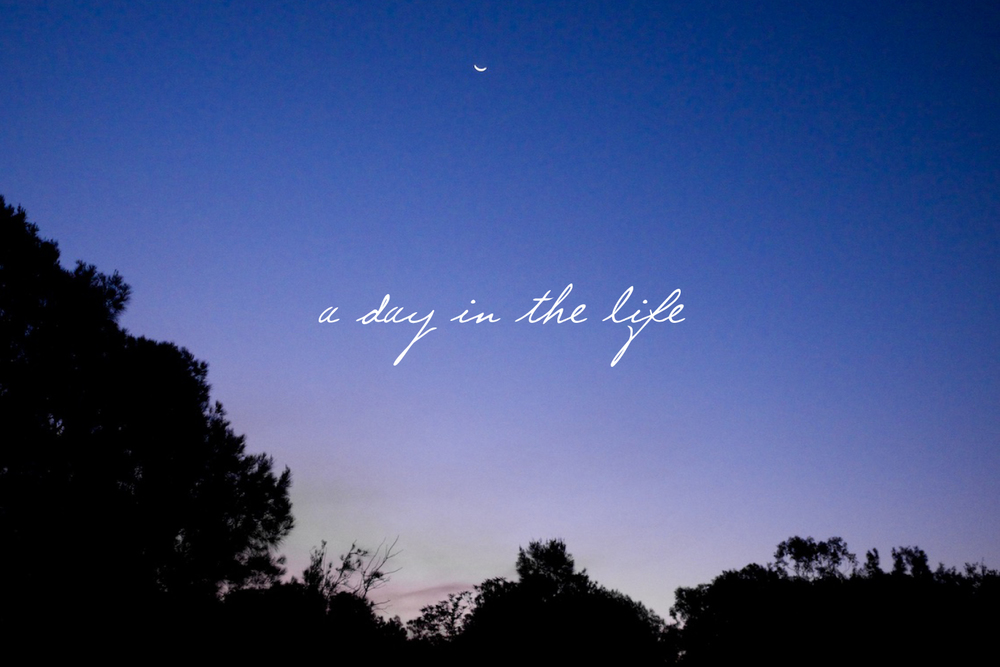 A day in the life - A blog post by Rhonda Mason for LIFE:CAPTURED Inc (The modern school of memory keeping)