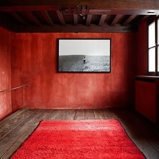 Red Zen #borishouse #envelopedincolour #interiors #red