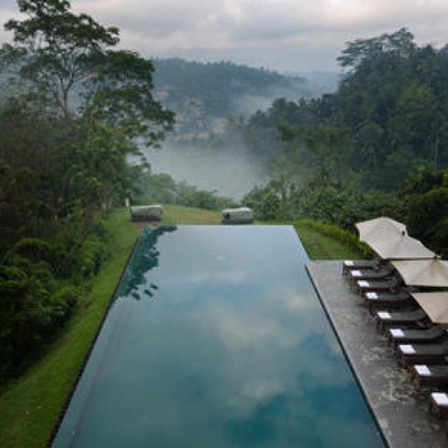 Misty 💦 #architecture #pools #nature #alila