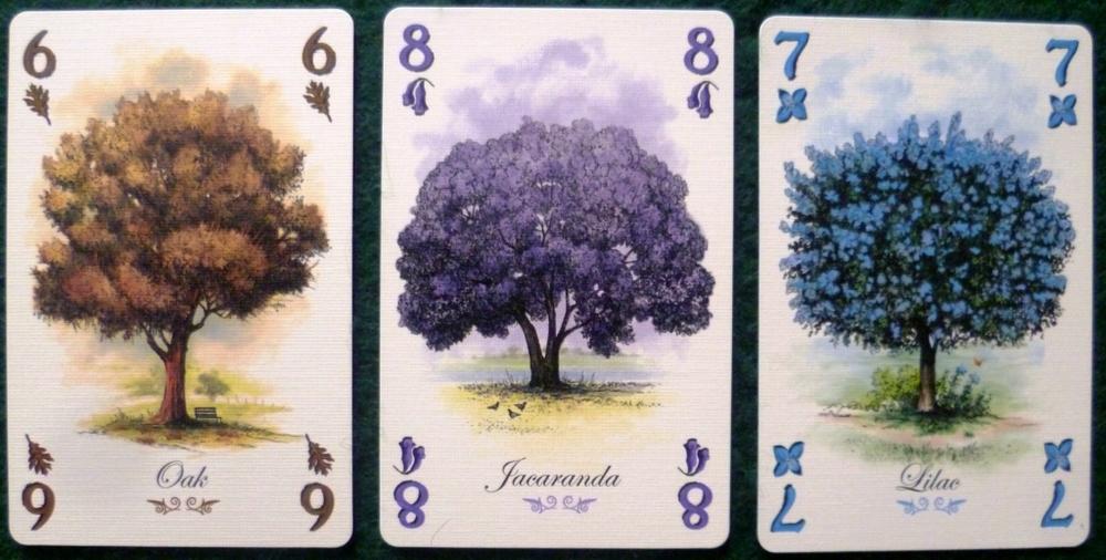 The lovely artwork of Arboretum
