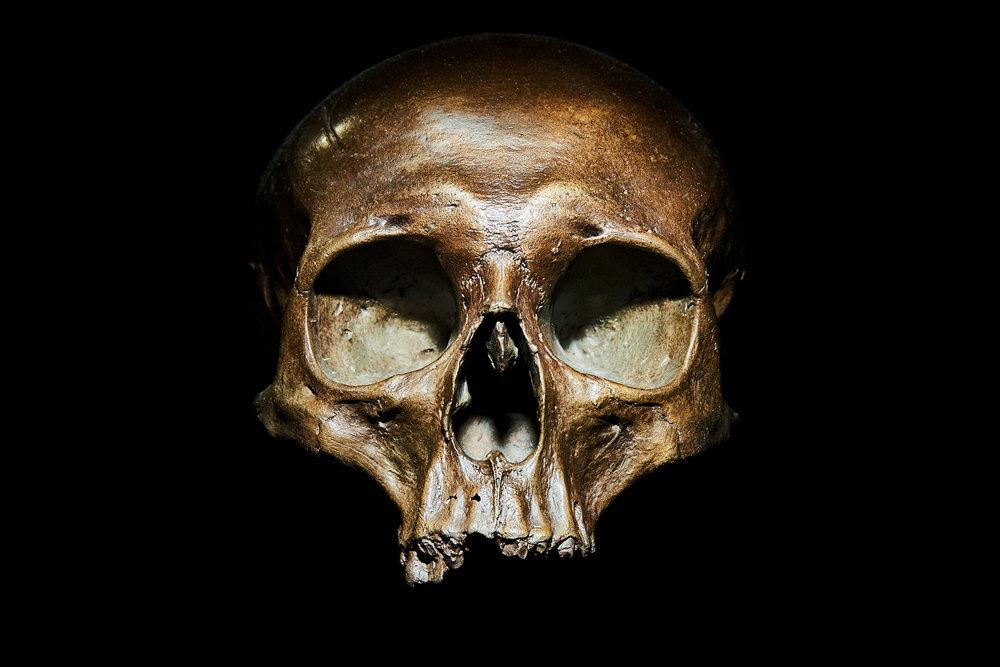 Hannibal Skull F/11 1/15 Sec ISO 100