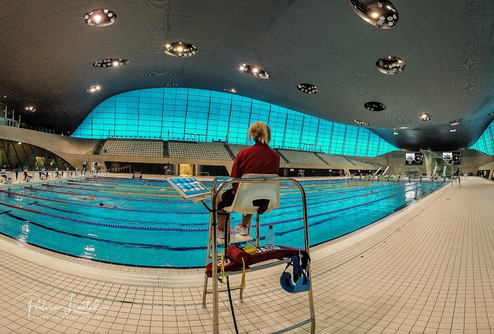 "The ""Olympic Pool"" at the London Aquatic Centre"