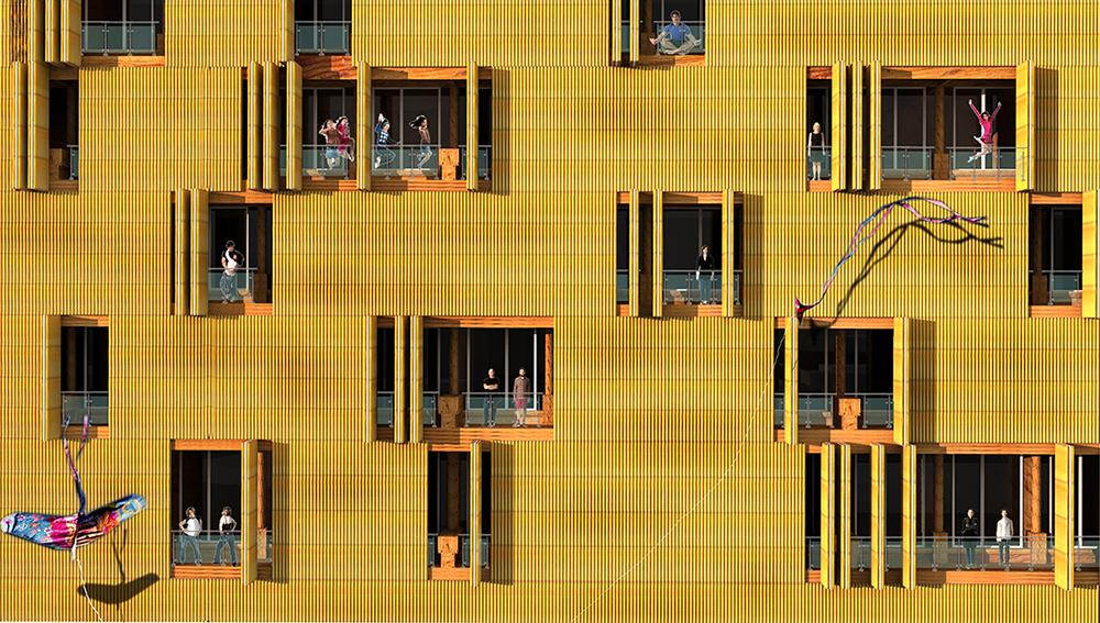 timber com 1 ss.jpg