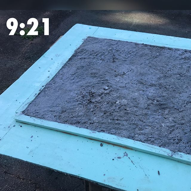Day 4: My #papercrete slab / tile is finally starting to lighten in color. It was off to a frustrating, dewy start this morning, but we moved the mold to the sunniest spot - a few feet from the solar panel that electrifies the shed. But we're having great weather. Nearly cloudless days with temps in the 70s! • • In other news, a formation of bugs parked on the flower my Gran gave me at the beginning of summer. • • • • • #learnsomethingnew #artlife #inthestudio #materialtesting #pulp #yeahthatgreenville #ecoart #southcarolinaartist #sustainableart #transmutation #learnbydoing #aqueous #hotafternoon #mixedmedia #paperart #recycledpaper #whatbugisthis