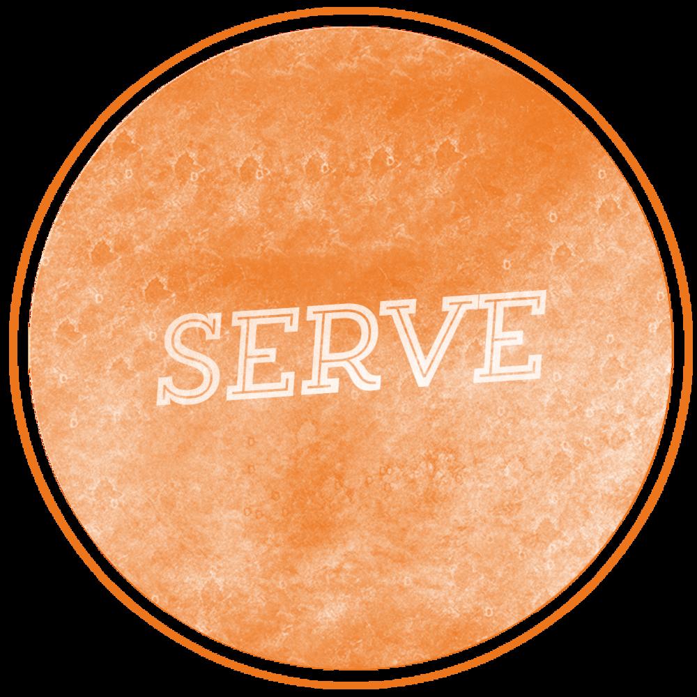 _0007_MS-Serve.png