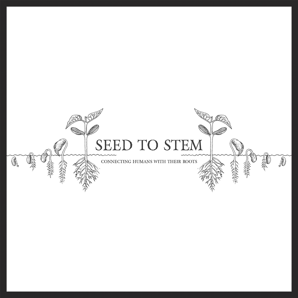 Seed to Stem