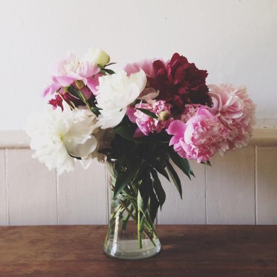 Floral arrangements, workshops, and simple bouquets.