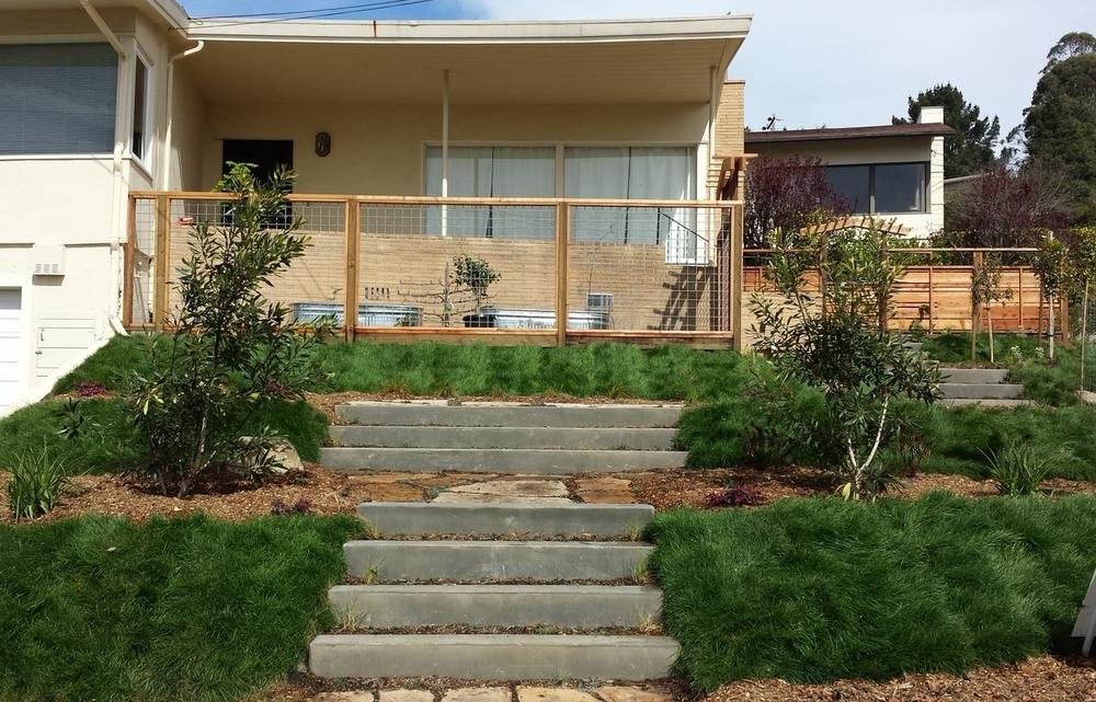 Kensington Terraced Garden