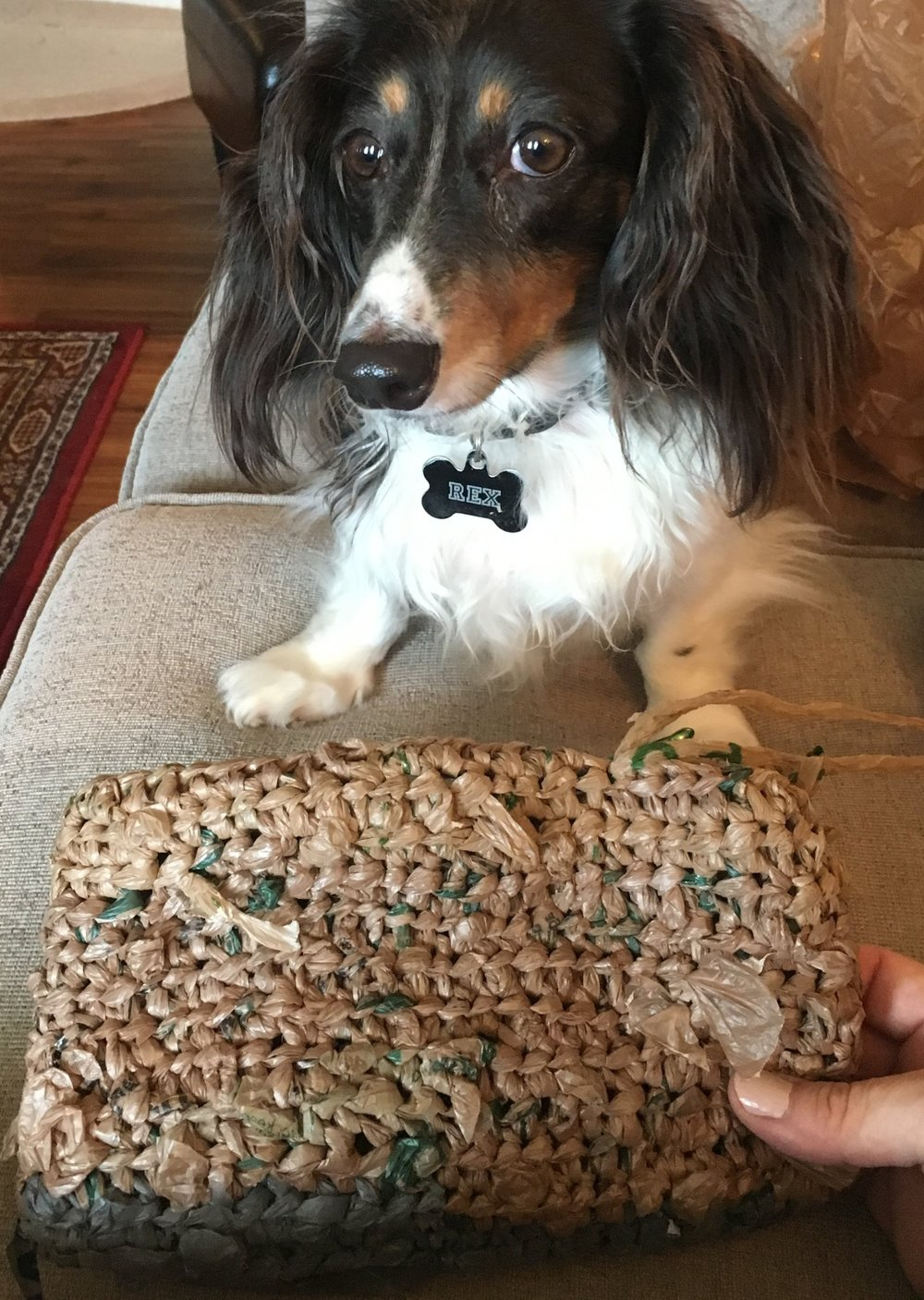 (A Plarn Bag in progress. Your results may vary—cute dog not included)
