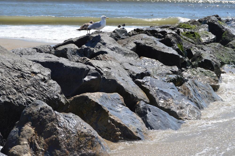 Fort Tilden Beach Jetty 8-2014.JPG