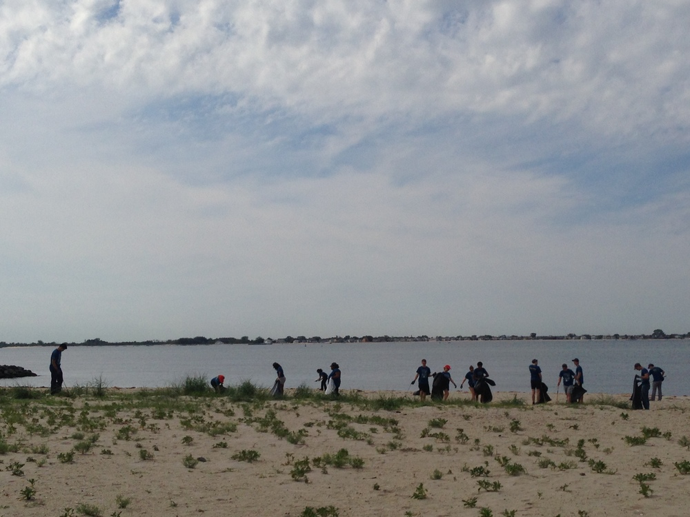 Volunteers comb the beach during a Plumb Beach cleanup.