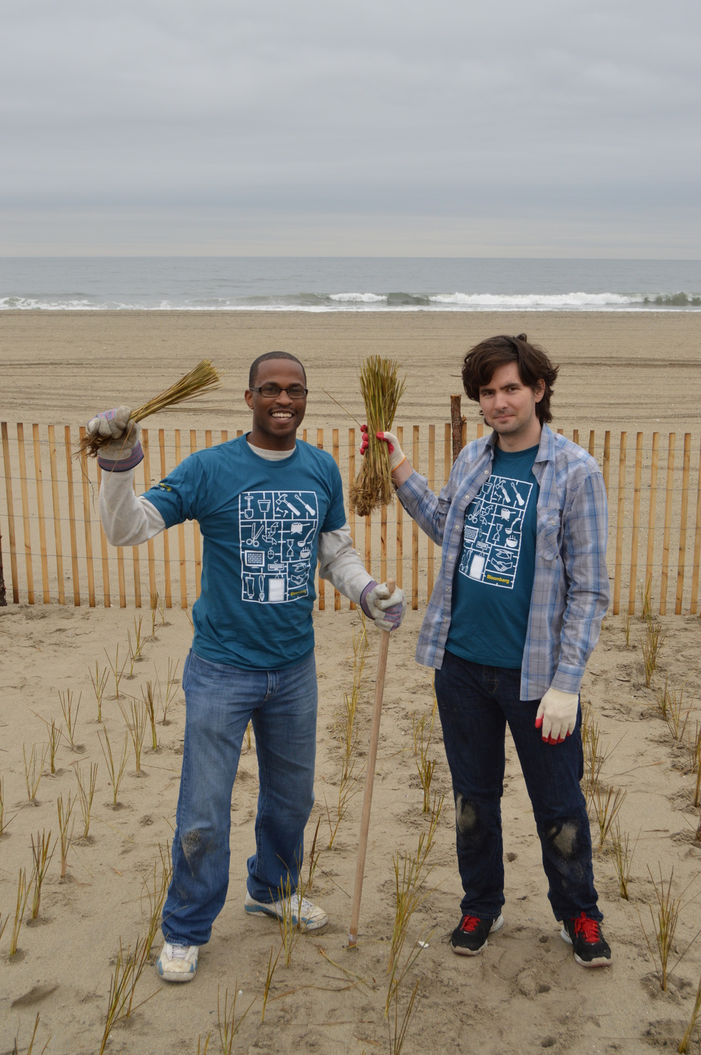Volunteers proudly pose with the beach grass culms they have planted on the Rockaway dunes.