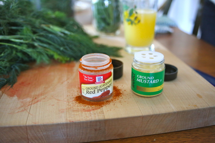 We used a dash of Ground Mustard and Cayenne Pepper to top off the ingredients in our jars.