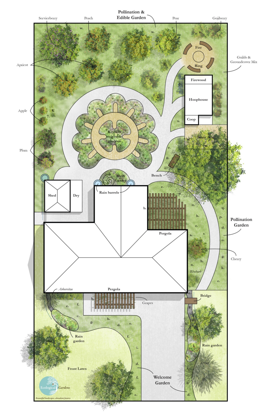 Example of an Ecological Gardens' landscape design for an urban homestead with areas for edible gardens, fruit trees, rain gardens and pollinator gardens.    Image courtesy of Ecological Gardens