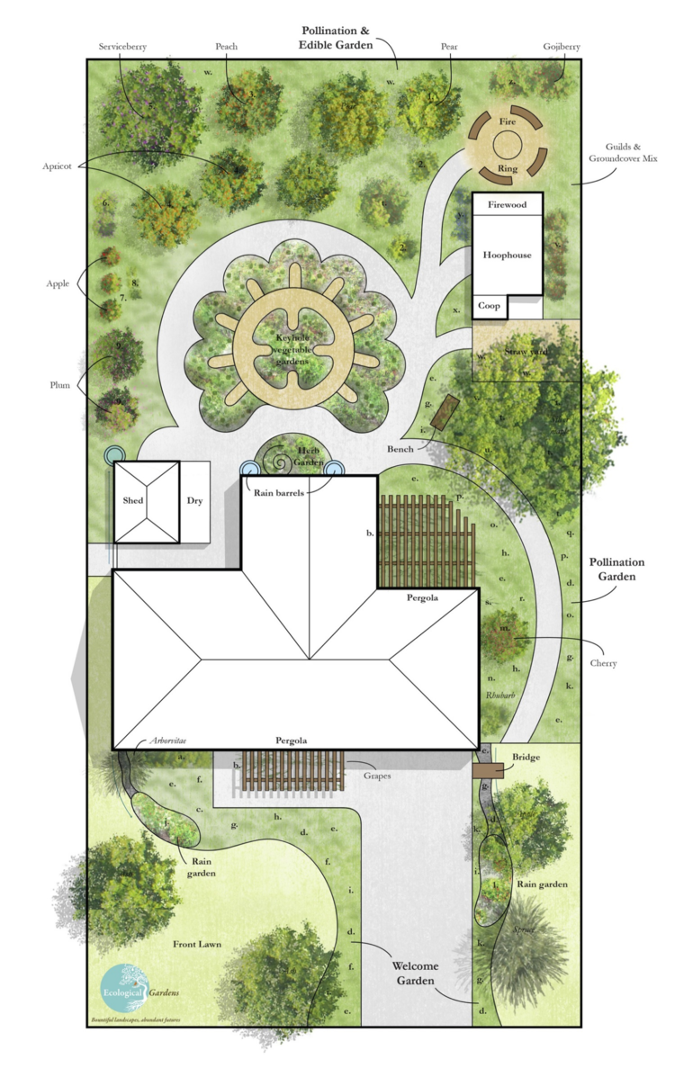 Example of an Ecological Gardens' landscape design for an urban homestead  with areas for edible
