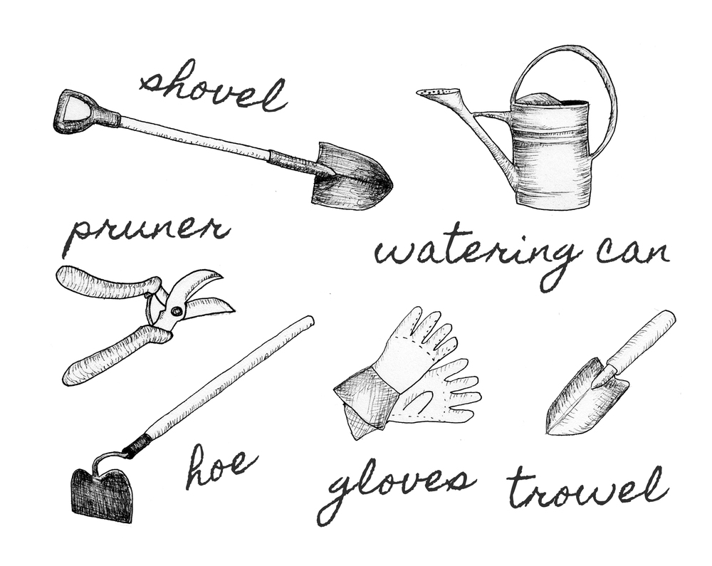 A basic gardening tool kit should include a hoe, gloves, growl, pruner, trowel, watering can and shovel. Original Illustration by  Rachel Rolseth