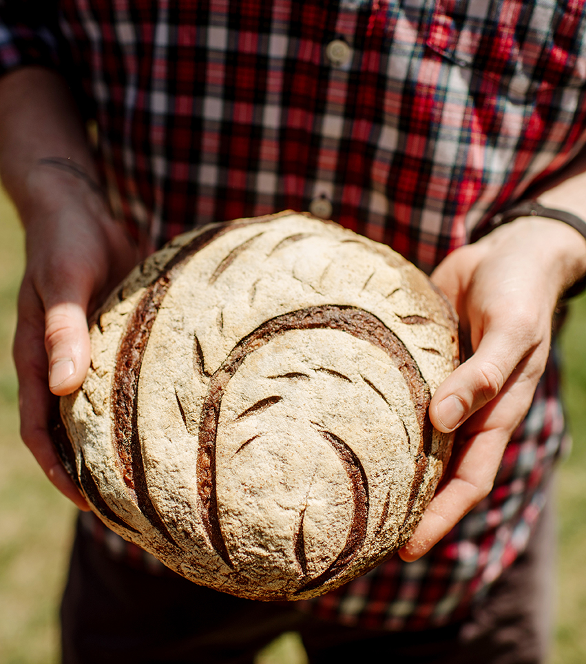 Wild Pine Cone Sourdough Starter from Ryan Stechschulte of  Spoon and Stable . Photos by Becca Dilley