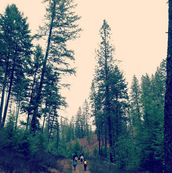 north-spokane-nature-hike-riverside-state-park