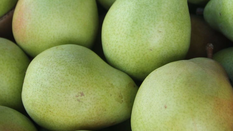 Fresh-Pear-Box-1.jpg