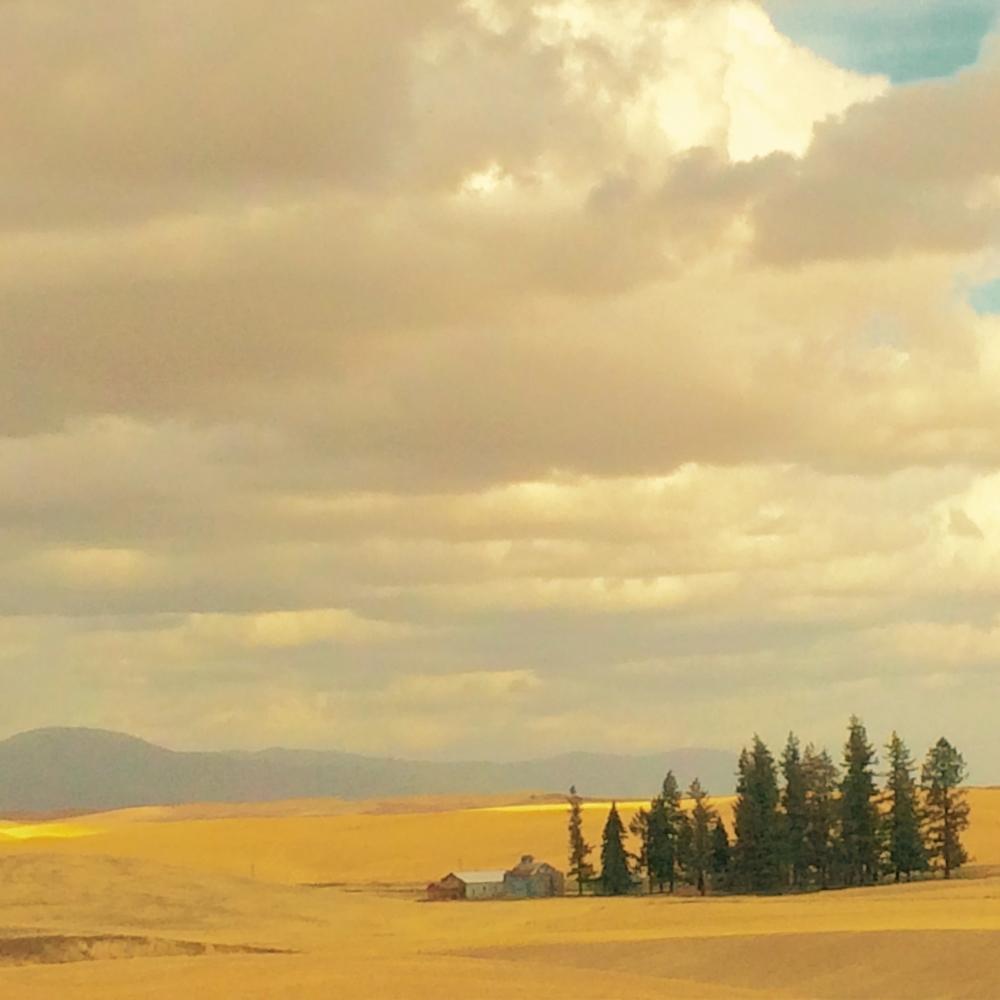 palouse-scenic-byway-spokane
