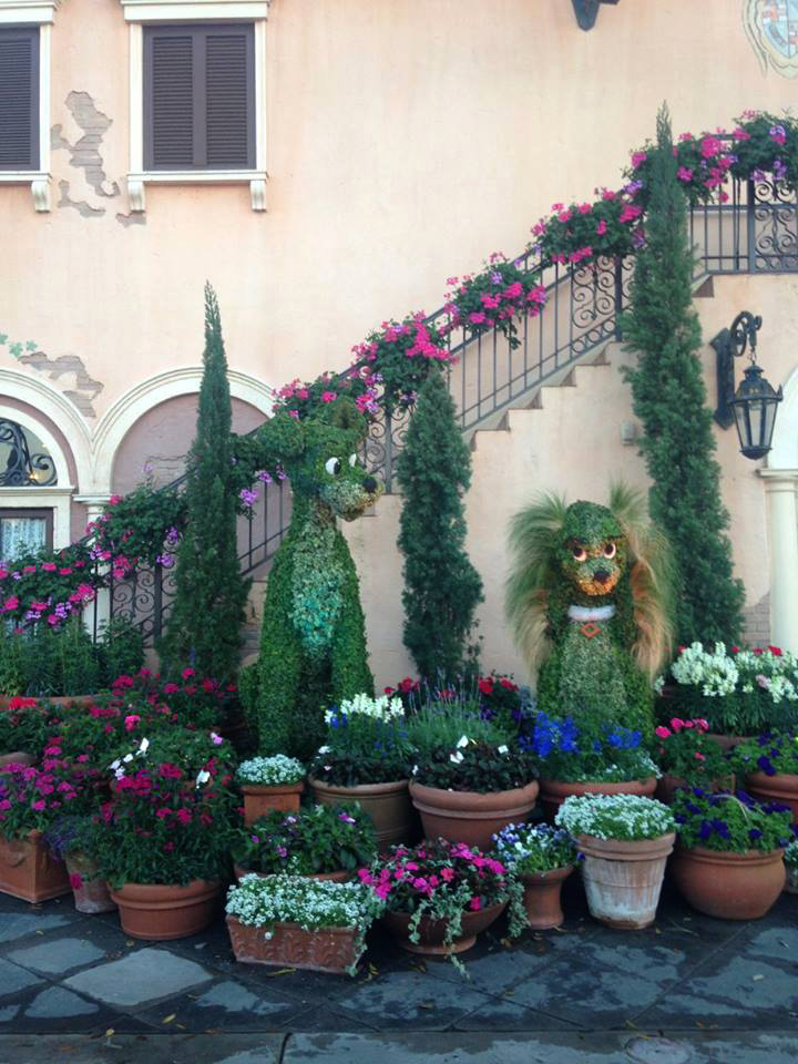We were in Disney for the Flower and Garden festival. We also did an easter egg hunt meant for kids and found it very difficult.