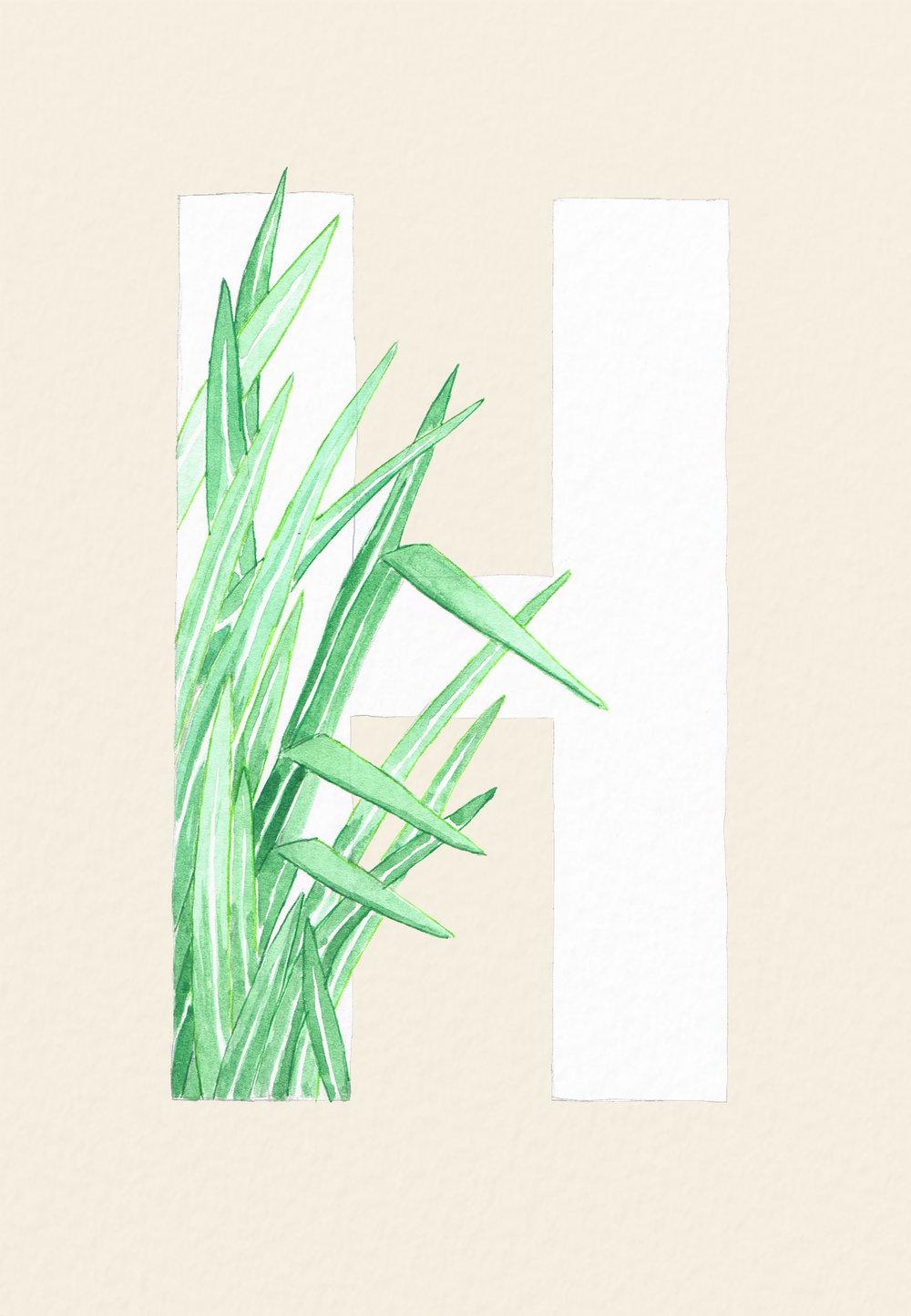 leavestypography.jpg
