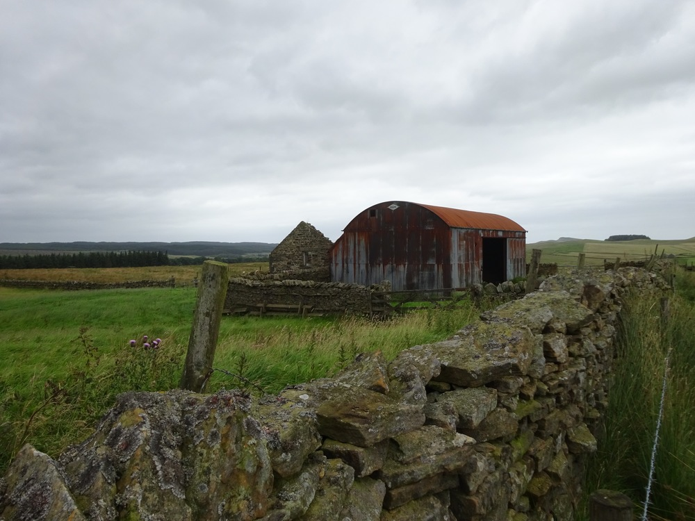 I LOVE this rusting shed!