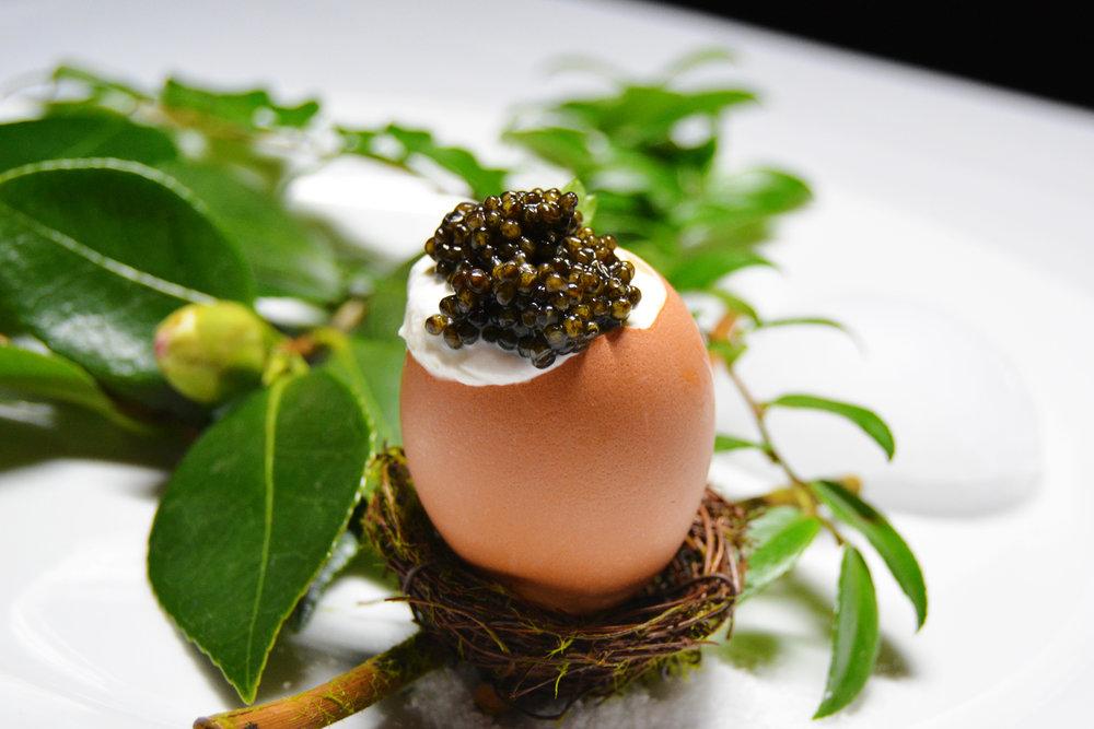 Egg2_Edited.jpg