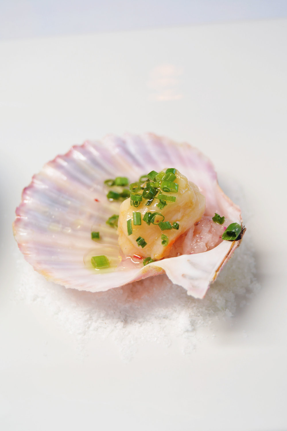 Crudo_Scallop.jpg