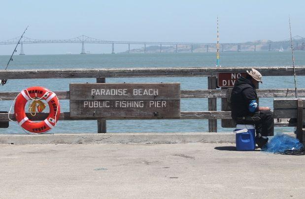 Paradise_Fishing#1.jpg