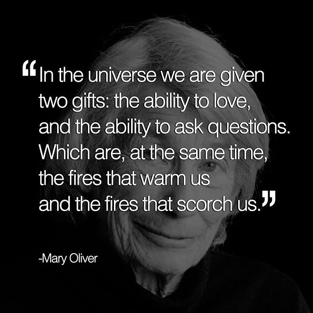 We're grateful for the life and work of Mary Oliver—who knew that good questions are just as important as good answers.  #maryoliver #thinkwrong #wordstoliveby