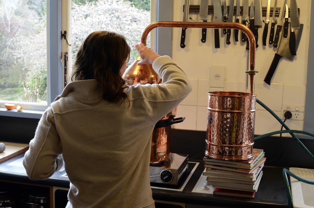 581 Distilling Anna Fiddling.jpg