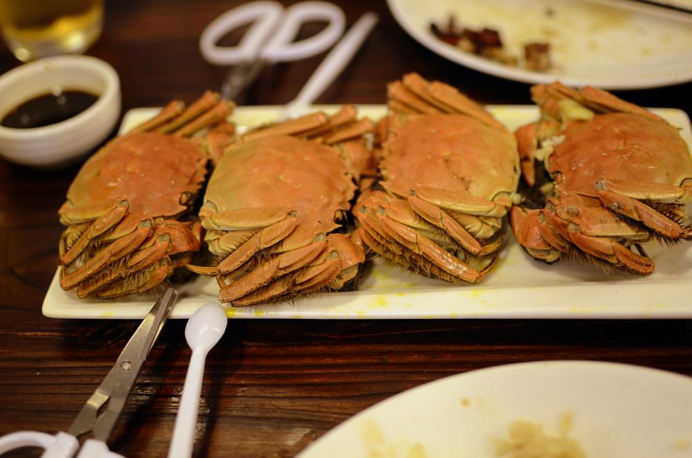 900 Crabs.jpg
