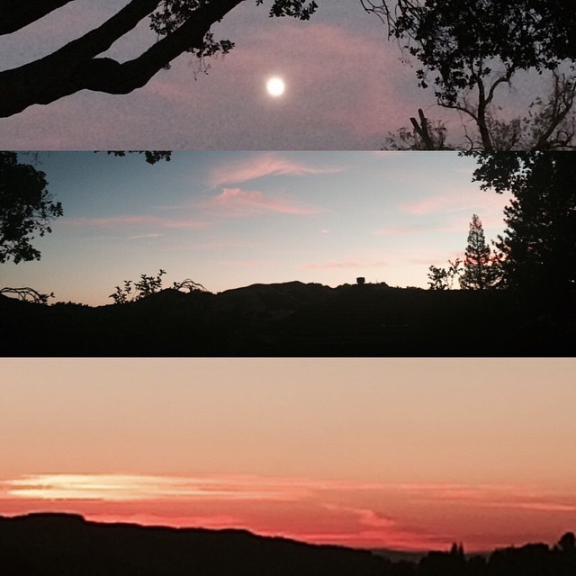 Amazing sunset tonight. Rising moon covered with pink clouds. So lovely being back #home.