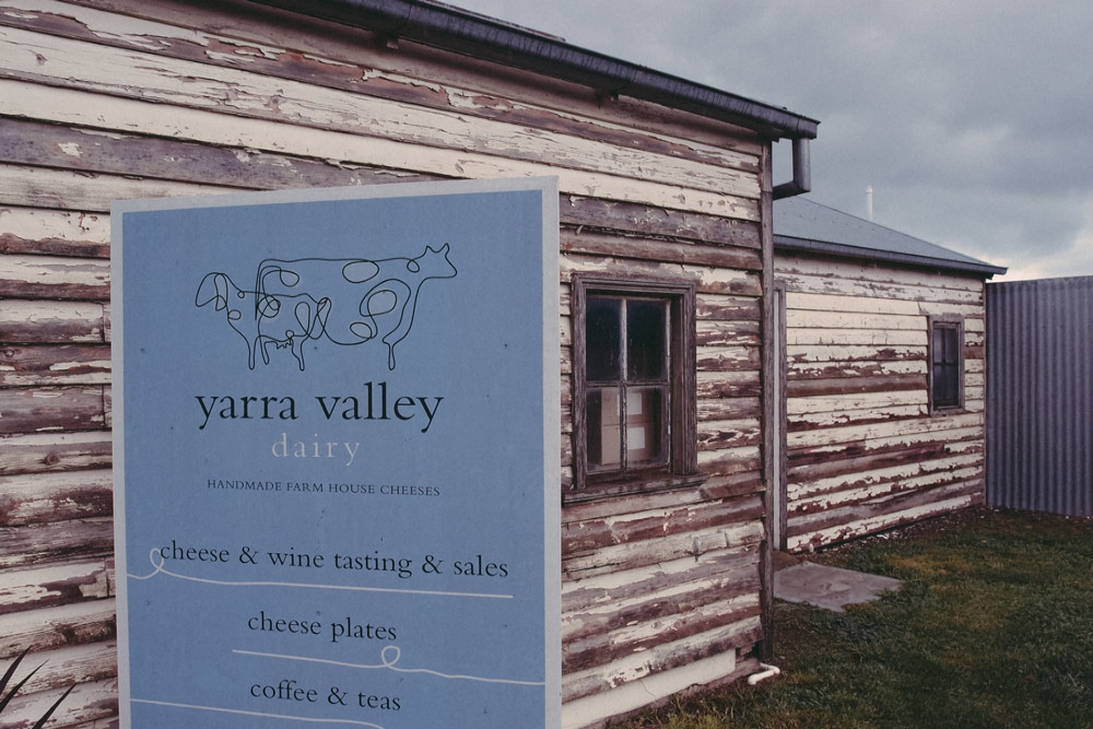 VISIT/ YARRA VALLEY DAIRY   YERING It's proximity to virtuous national and state parklands creates a tough and temperamental climate that is both testing and advantageous, not only for the vines but for winemakers, livestock and dairy farmers whose traditional-meets-contemporary style creates an easy-going ambiance that captures all.