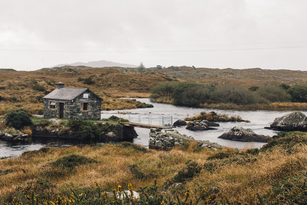 TRAVEL STORY/ LANDSCAPES OF IRELAND Rugged, majestic mountains loom above tranquil waterways. Dainty meadow flowers that sprout between the rocks on lunar like landscapes. Flocks of sheep that dot the windy roads like soft cotton balls.