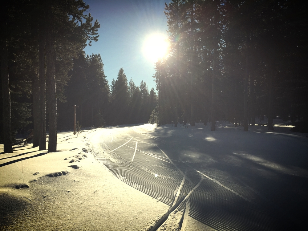 Great winter conditions in West Yellowstone at the Rendezvous Ski Trails