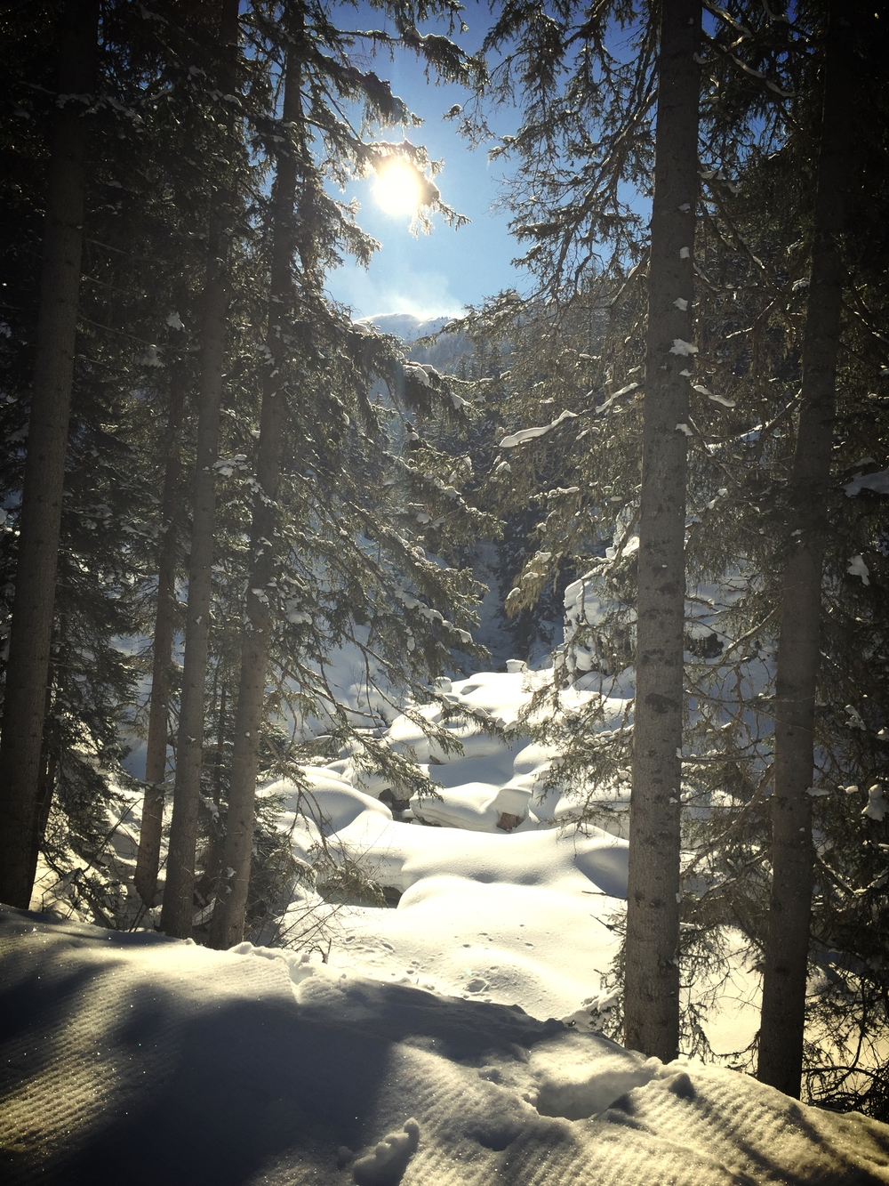 Mid Winter conditions shaping up well for beginning of March in Davos.Out training on the trails in  Flüela  valley.