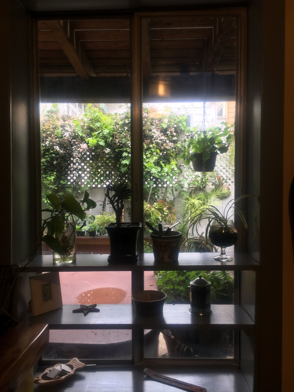 Juan & Megumi's green thumb window in SF