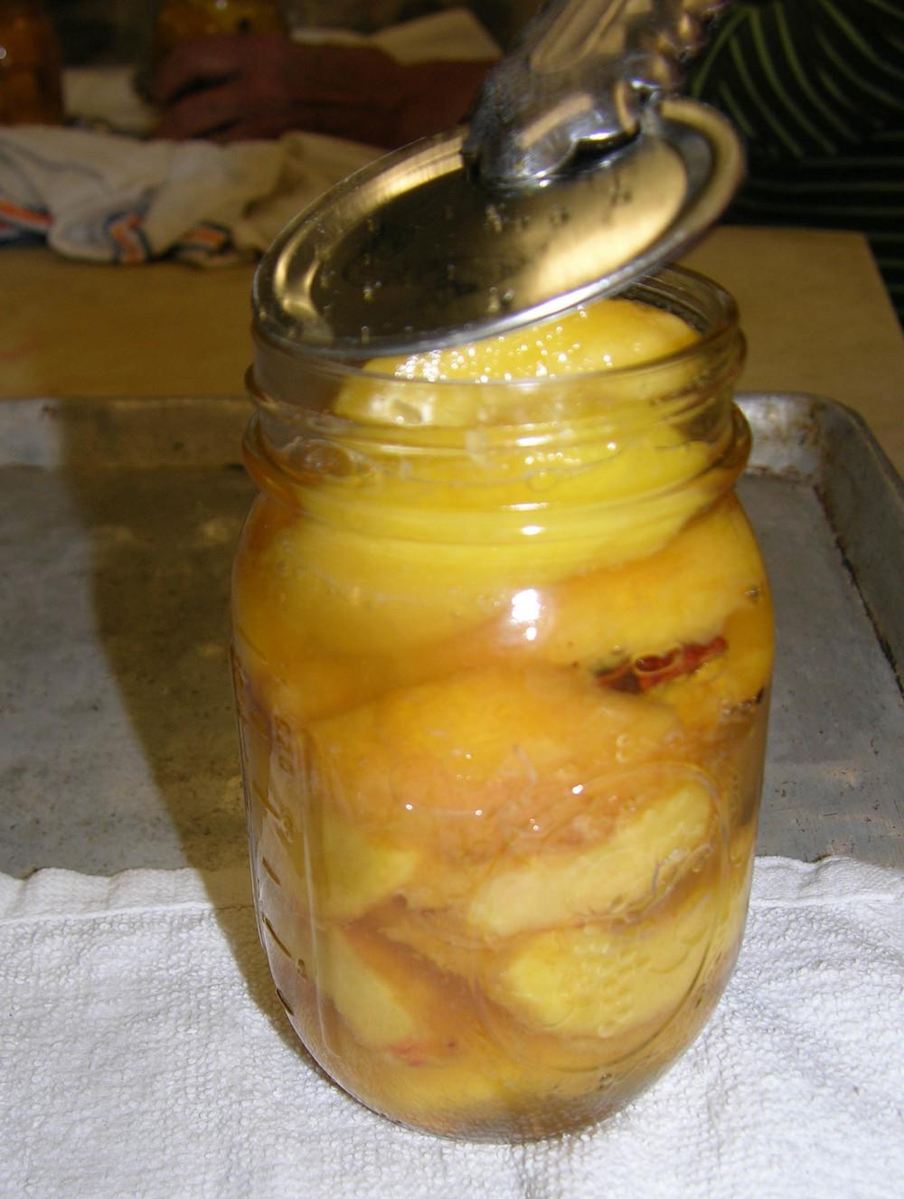 peaches & lid aa.jpg