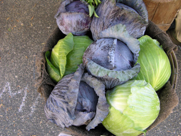 market-cabbage.jpg