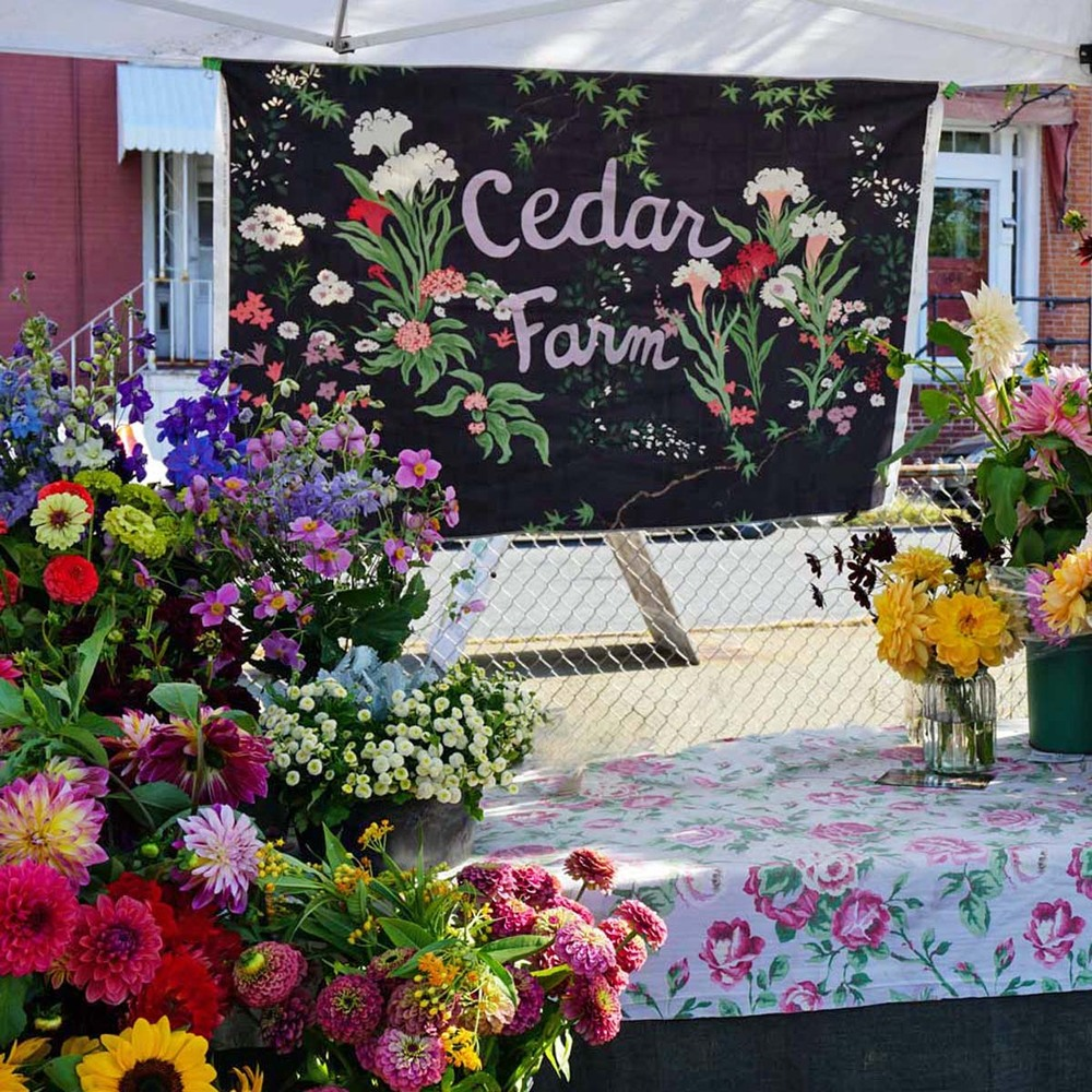 _Cedar-sign-DSC00009ab.jpg