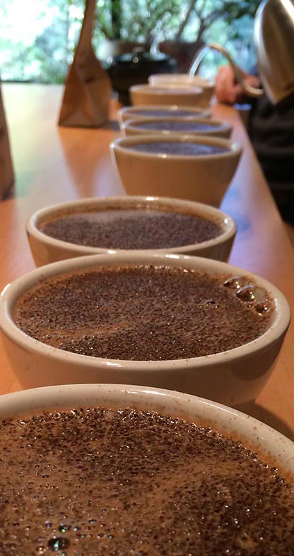 PHOTO COURTESY BARRINGTON COFFEE ROASTING COMPANY