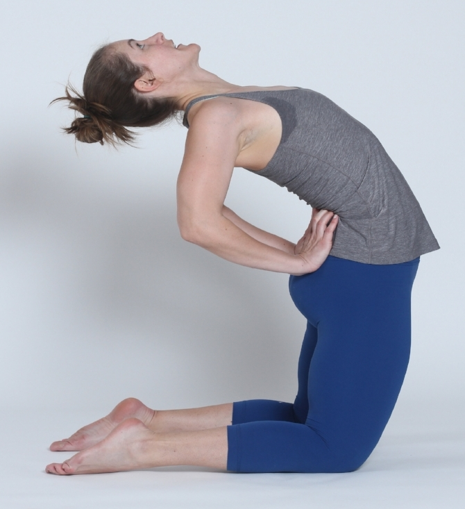 Image 5: Modified camel pose.