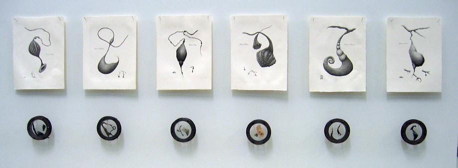 Putamen - 2009 - oroginal lithographs, mixed media
