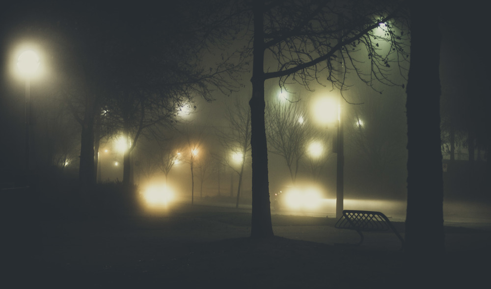 Fog Family Weekend-28.jpg