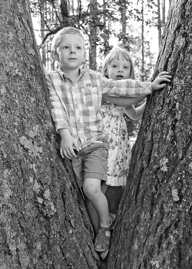 Z&L.tree.B&W.jpg