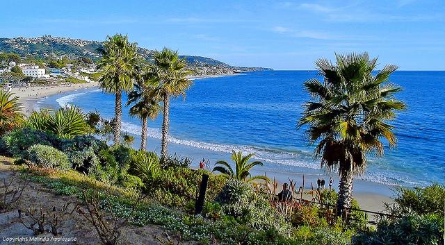 カリフォルニアのビーチ