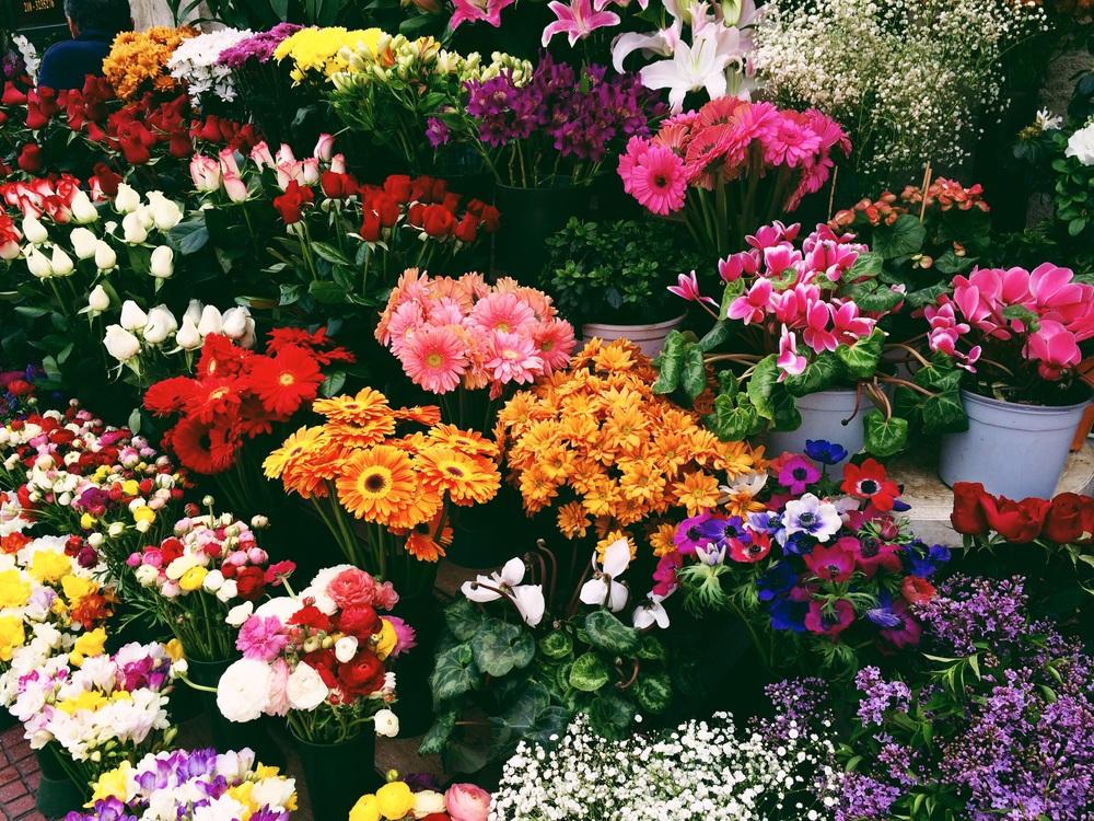 Flower shop near parliament.