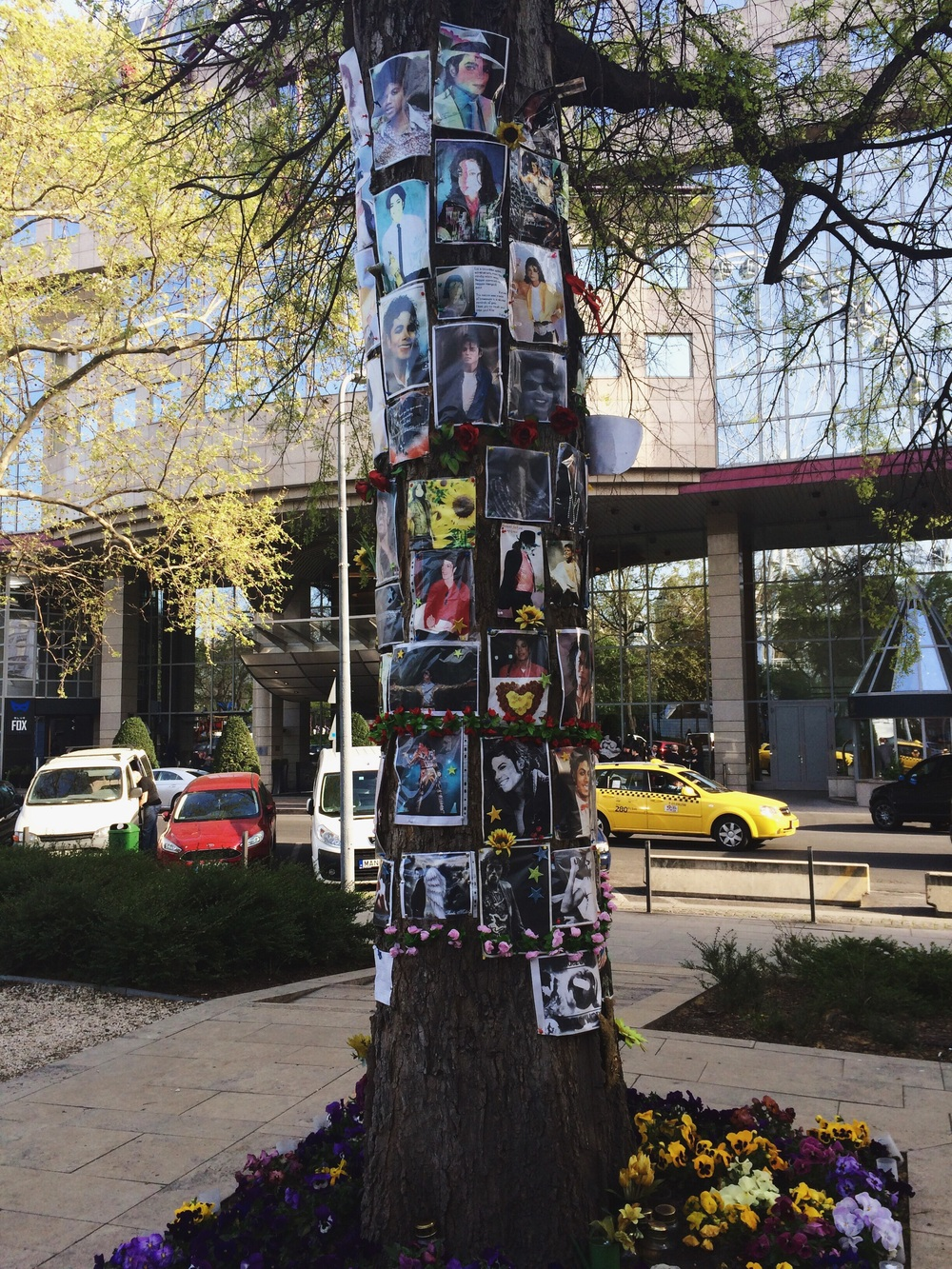 Michael Jackson memorial tree.